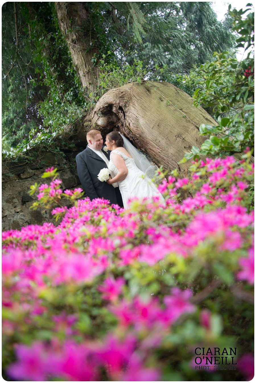 Angela & Connor's wedding at Tullyglass Hotel by Ciaran O'Neill Photography 19