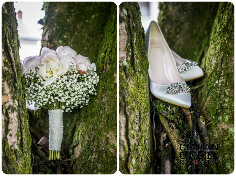 Tracey & Brian Og's wedding at Cabra Castle by Ciaran O'Neill Photography 04
