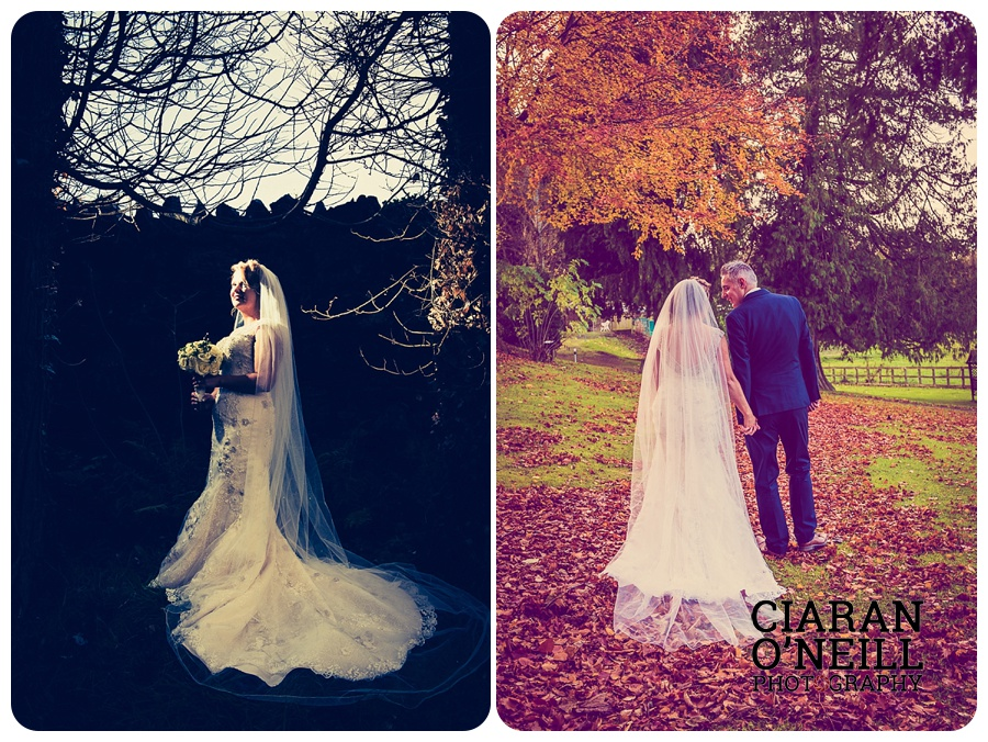 shauna-steves-wedding-at-the-millbrook-lodge-hotel-by-ciaran-oneill-photography-16