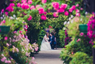 Jenny and Eoin's wedding at Carrickdale Hotel